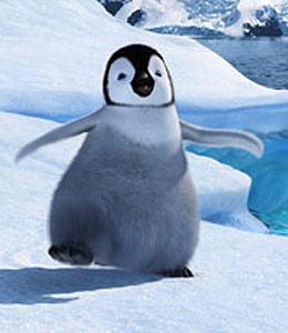 Pingüino Emperador Patagónico