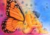 mariposa_envenenada